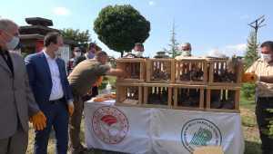 Kırıkkale'de 60 kınalı keklik doğaya salındı