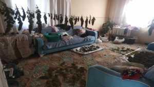 Osmaniye'de evinde uyuşturucu imal eden şüpheli yakalandı