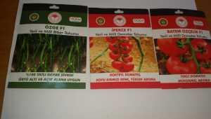 Ulaş'ta çiftçiye yerli ve milli sebze tohumu desteği