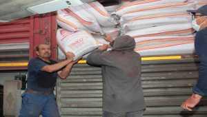 Çiftçiye 'buğday alım garantili' tohum desteği
