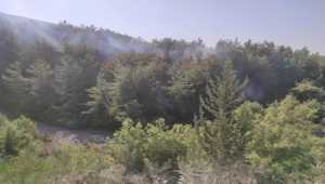 Hatay'da çıkan orman yangınına müdahale ediliyor