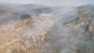 Kahramanmaraş'ta örtü yangınına müdahale ediliyor