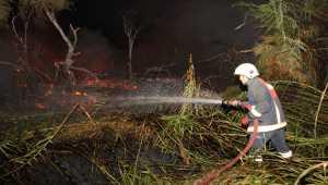 Mersin'de araştırma enstitüsünün bahçesinde yangın