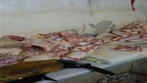 Kayseri'de uygunsuz koşullarda tavuk eti paketleyen 4 işletmeye 111 bin 508 lira ceza