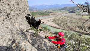 Antalya'da uçurumda mahsur kalan 3 keçiyi jandarma kurtardı