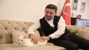 Belediye Başkanı sahiplendiği kediye belediyede bakılacak