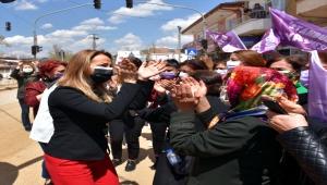 CHP Kadın Kollarının