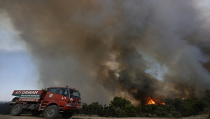 Manavgat'ta bir mahalledeki ormanlık alanda yangın çıktı