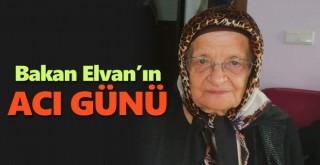 Bakan Elvan'ın Teyzesi Vefat Etti