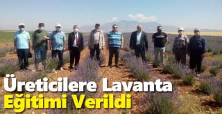 Karaman'da Üreticilere Lavanta Eğitimi Verildi