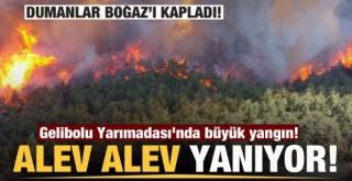 Gelibolu Yarımadası'nda büyük yangın!
