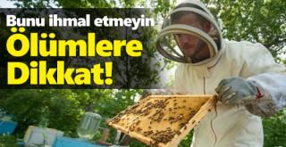 Arı ölümlerine karşı ilaçlama uyarısı