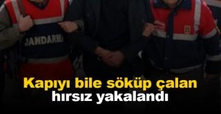 Karaman'da devlet mallarını çalan hırsız yakalandı