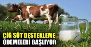 Çiğ süt desteği ödemeleri başlıyor! İşte hesaba yatacağı saat...
