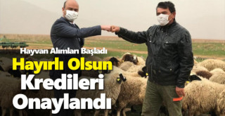 Karaman'da kredileri onaylanan üreticilerin hayvan alımları başladı