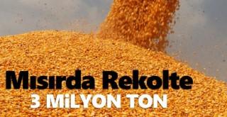 3 milyon ton mısır rekoltesi bekleniyor