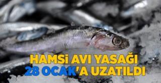 Tarım ve Orman Bakanlığı duyurdu: av yasağı uzatıldı