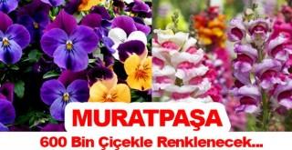 Antalya dikilen çiçeklerle renklenecek