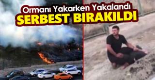 PKK sempatizanı ormanı yakarken suç üstü yakalandı; Serbest bırakıldı!