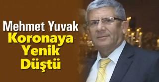 Mehmet Yuvak Koronaya Yenik Düştü